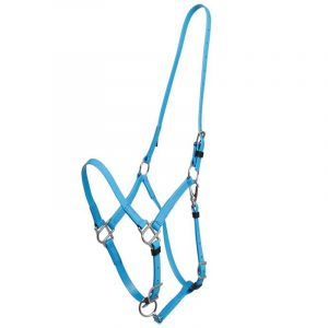 Pure Color,Simple Horse Halter