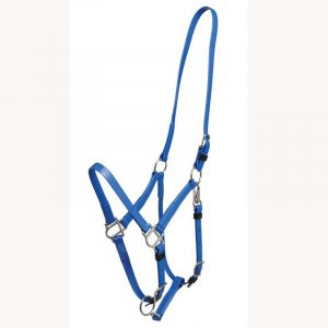 Horse Halter Supplier