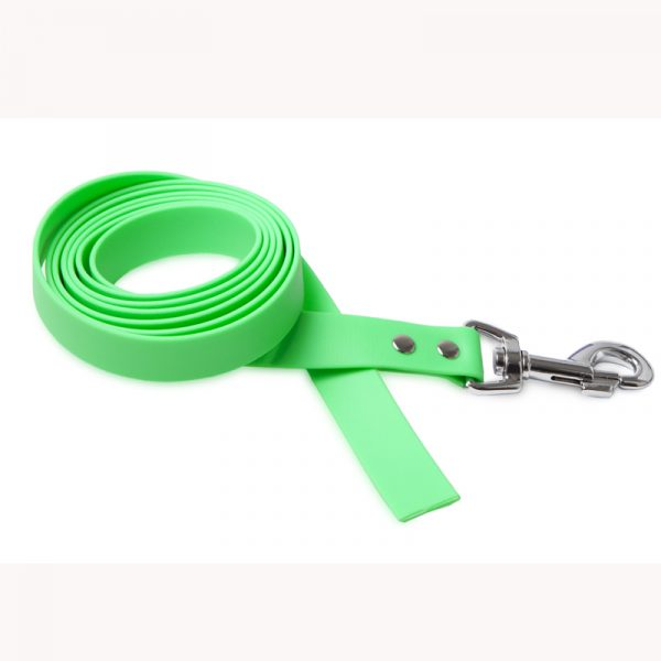 Training Dog Leash