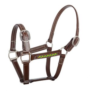 Halter Chinese Supplier