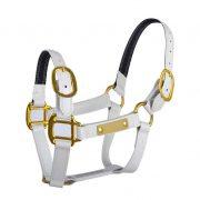 New Design,Fancy Horse Halter