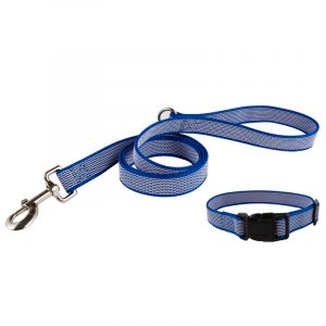 Grip Dog Collar and Leash