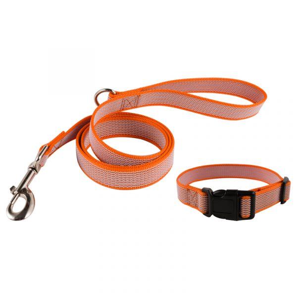 Grip Dog Collar and Leash