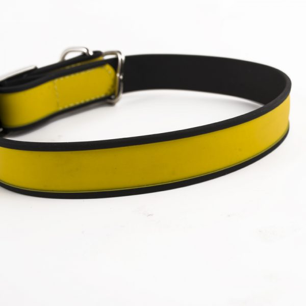 Chain dog training collar