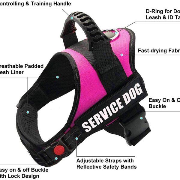 Service dog harness2