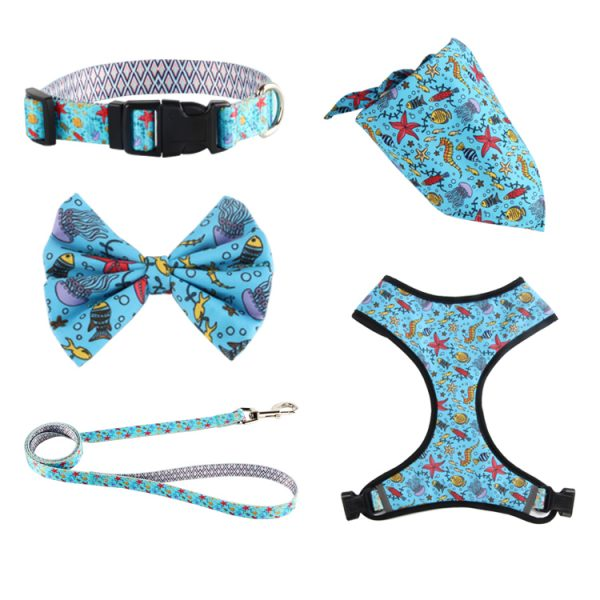 custom collar leash (16)