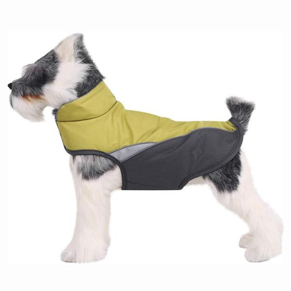 dog jacket (3)