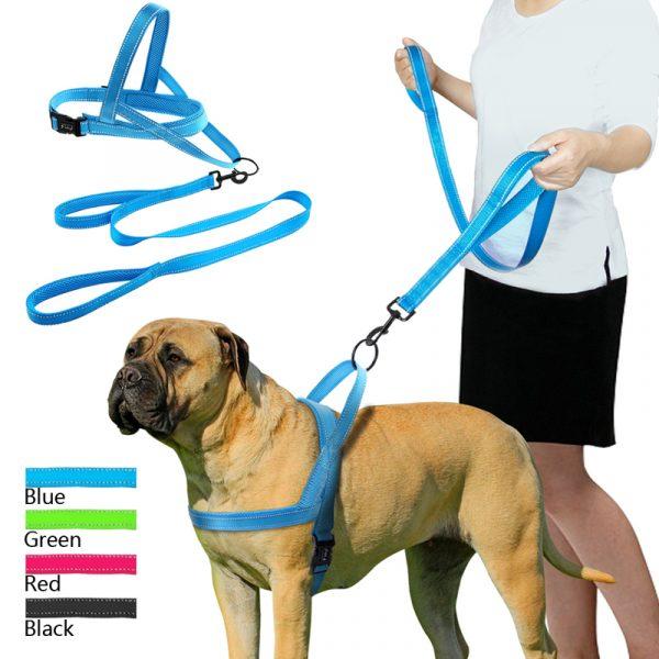 reflective dog leash (18)