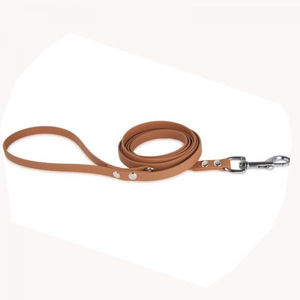 PVC Dog Leash