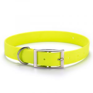 Dog Collar,Biothane coated webbing