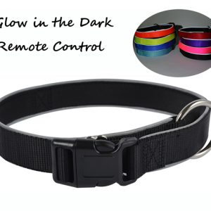 Dog Collar Nylon Dog Collar