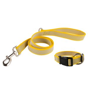 No Slip Nylon Dog Leash for Training