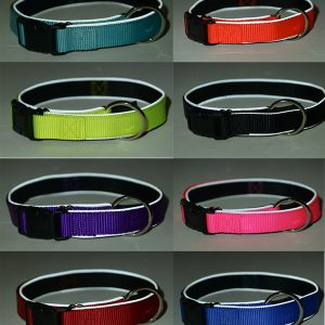 Adjustable Dog Collar for Dog