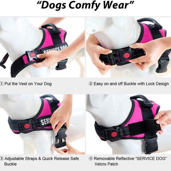 Service dog harness 4
