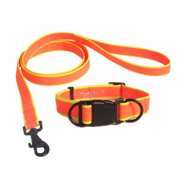 collar leash set 3
