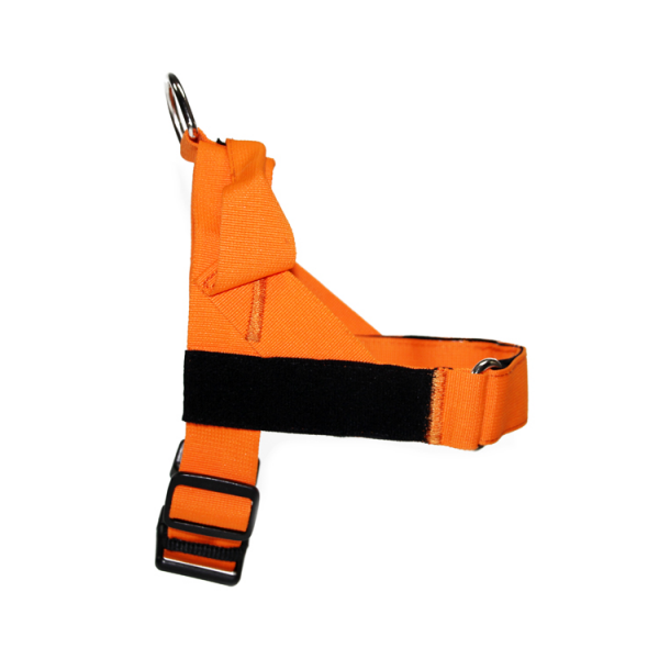K9 dog harness (4)