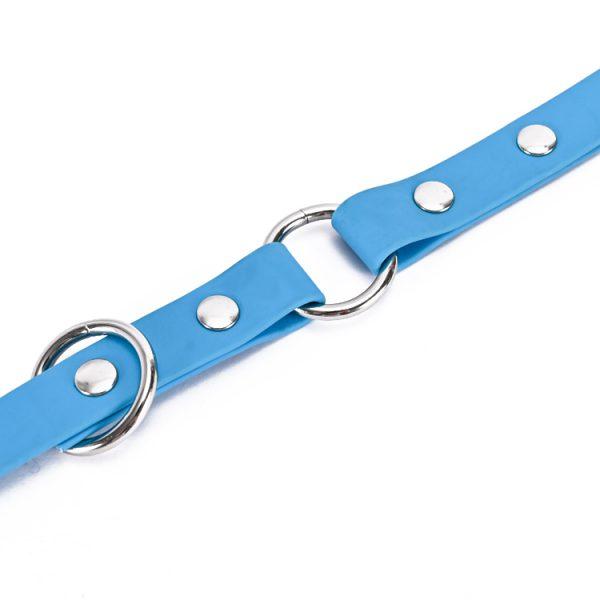 Multifunction dog leash (4)