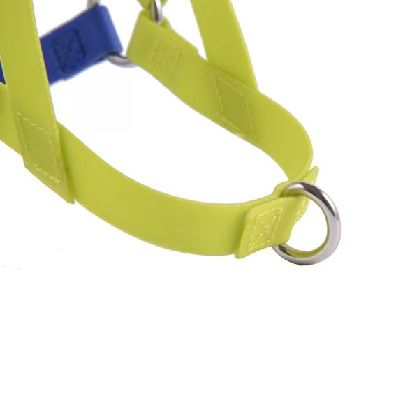 pvc dog harness (3)