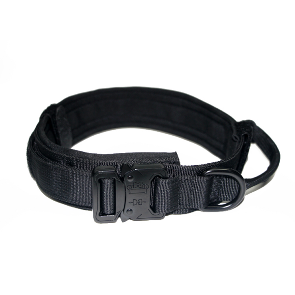tactical dog collar (1)
